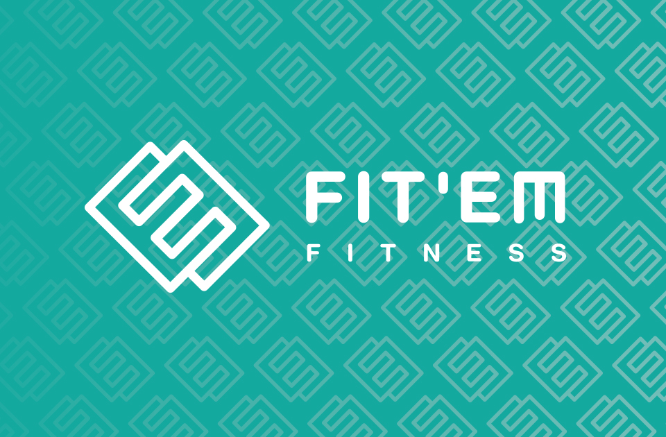 FIT-EM logo on teal