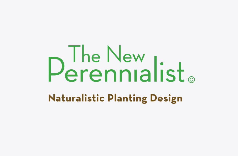 The New Perennialist logo