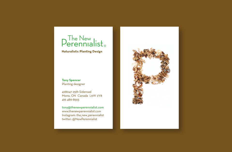 The New Perennialist business card on brown