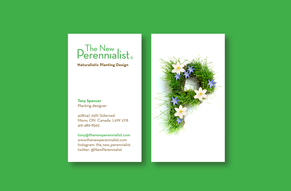 The New Perennialist business card on green